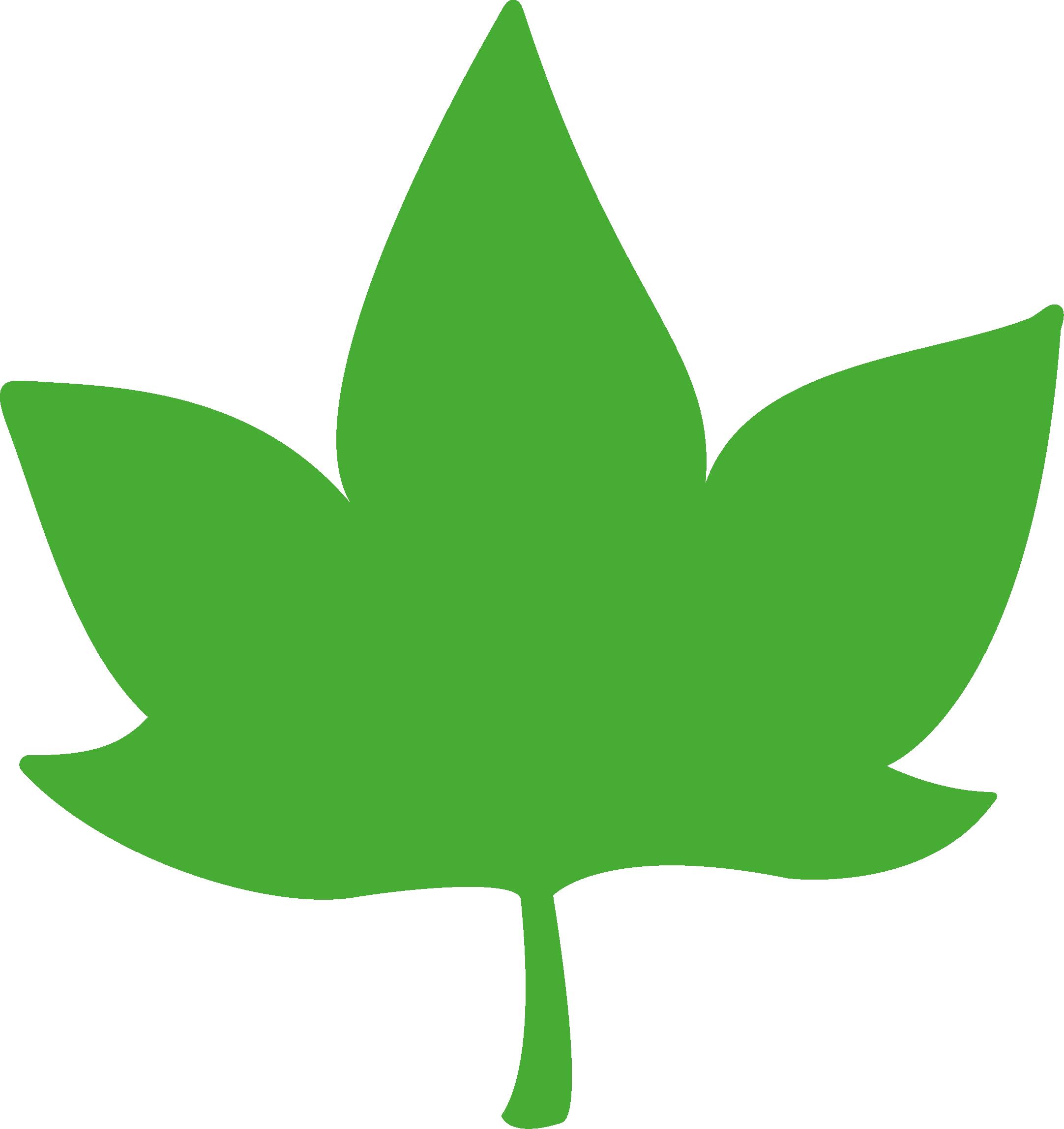HOJAS PQV verde